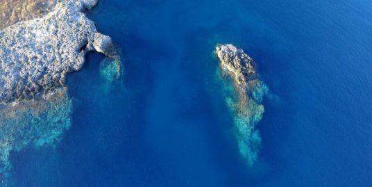 Salentomar-Scoglio-a-forma-di-delfino-santa-caternia-nardo-img3